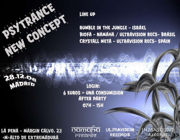 Party Flyer Psy Trance New Concept - After Party 28 Dec '08, 07:00