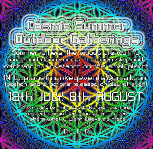 Party Flyer Cosmic Summer outdoor gathering 8 Aug '09, 13:00