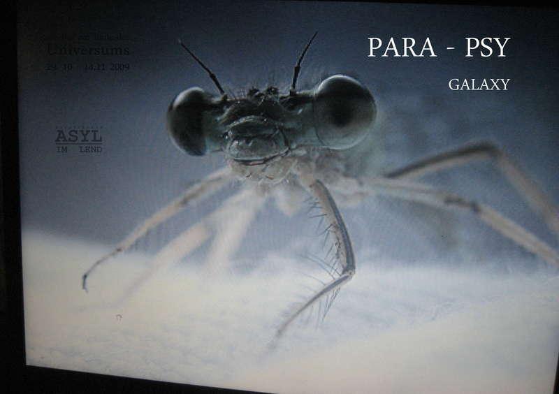 Party Flyer Para - Psy Galaxy 13 Nov '09, 22:00