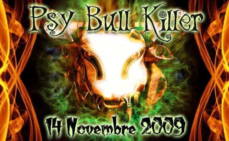 Party Flyer PsY BulL KiLleR 14 Nov '09, 23:00