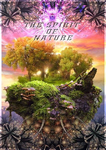 Party Flyer THE SPIRIT OF NATURE - (RIMANDATA CAUSA NEVE) 15 Dec '12, 21:00
