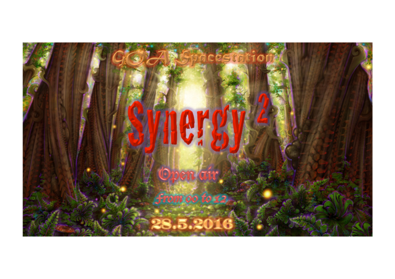 Party Flyer Sinergy Vol 2 28 May '16, 22:00