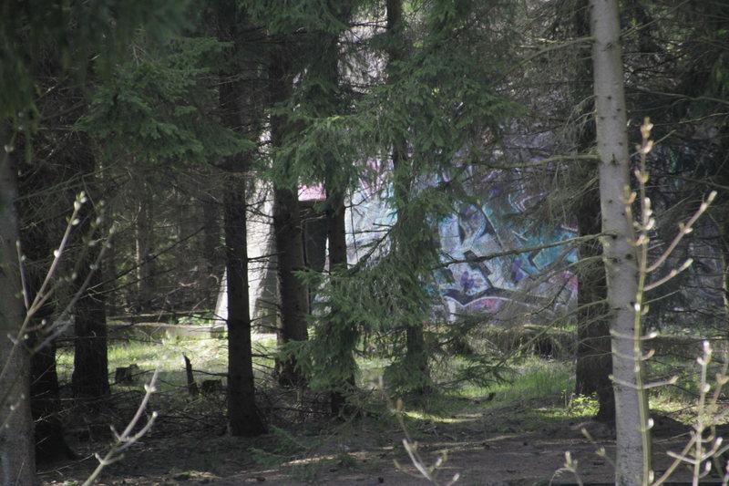 Zurück zu den Wurzeln Festival 2016@Secret Forest 9 Jun '16, 16:00