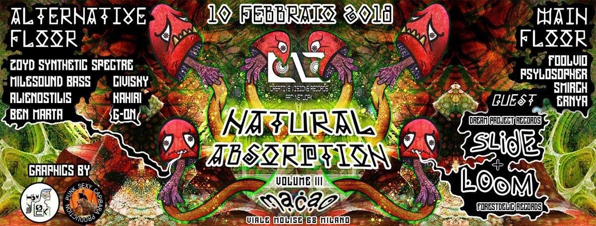 Party Flyer Slide + Loom (2h live set) - Natural Absorption Carnival 3th ed.   made by Cvr 10 Feb '18, 21:00