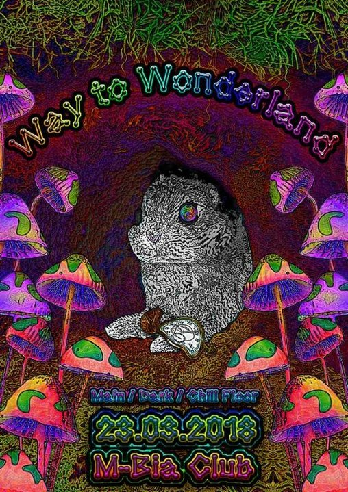 Party Flyer Way to Wonderland 23 Mar '18, 23:00