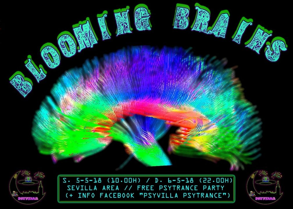 Party Flyer BLOOMING BRAINS 5 May '18, 10:00
