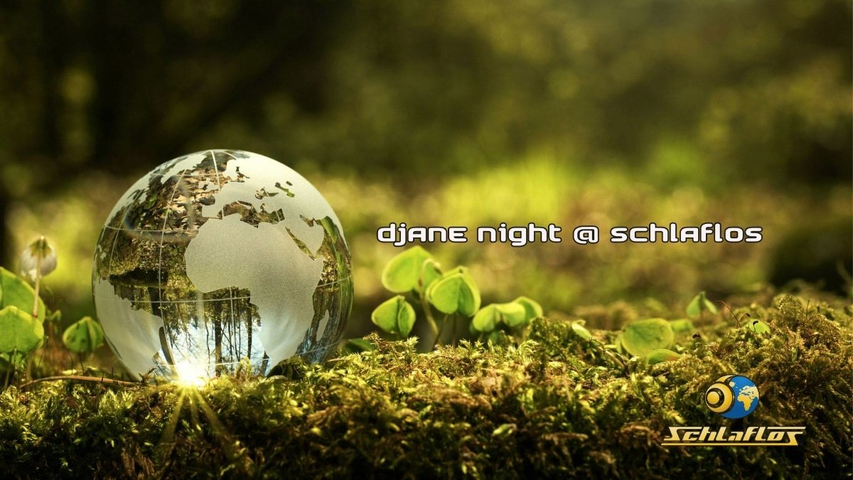 Party Flyer Djane Night at Schlaflos 24 Nov '18, 23:00