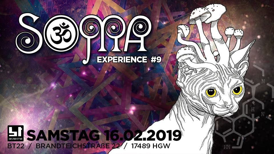 Party Flyer 16 Soma-Experience #9 16 Feb '19, 23:00