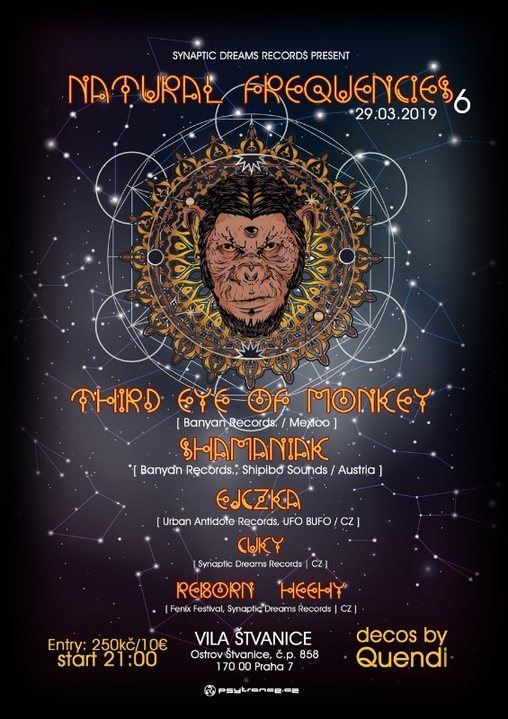 Party Flyer Natural Frequencies 6 w/ Third Eye of Monkey 29 Mar '19, 21:00