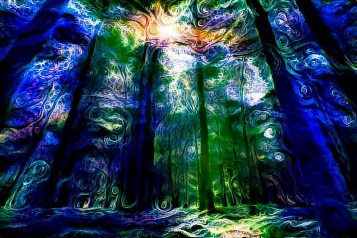 *+-The Lucid Forest-+*: StRanGe DrEaMs*+-ॐ 10 May '19, 22:00