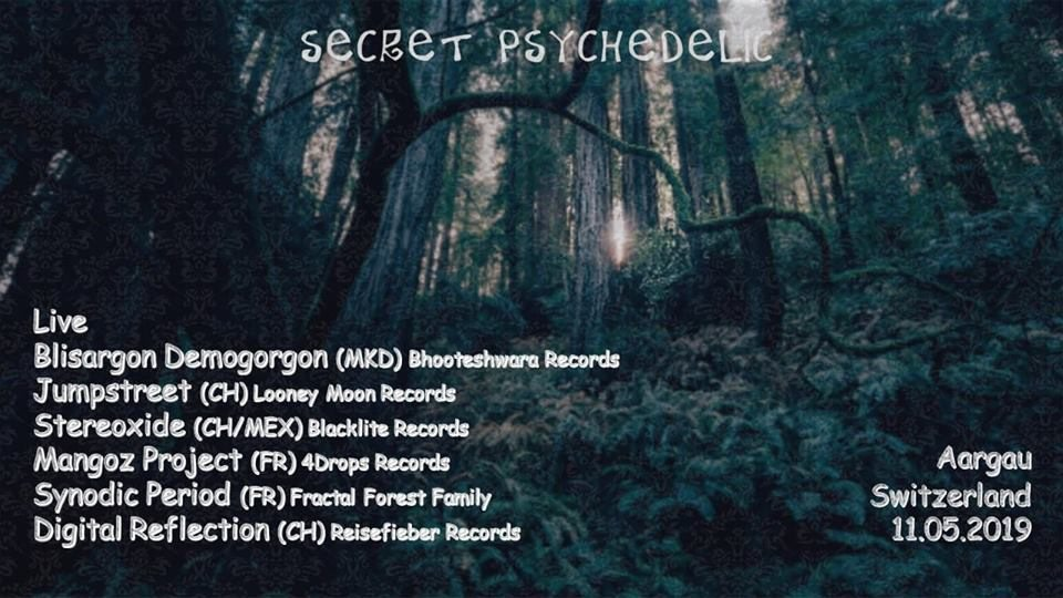 Party Flyer Secret Psychedelic 11 May '19, 01:00