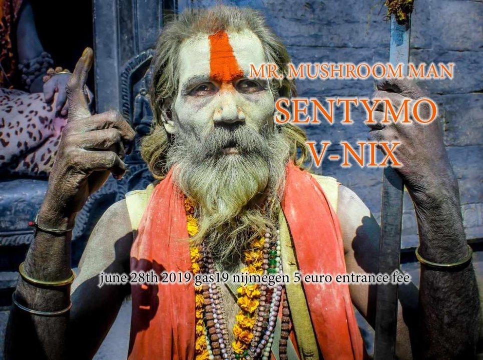 Party Flyer Quantum Tribe (journey into psytrance) 28 Jun '19, 23:00
