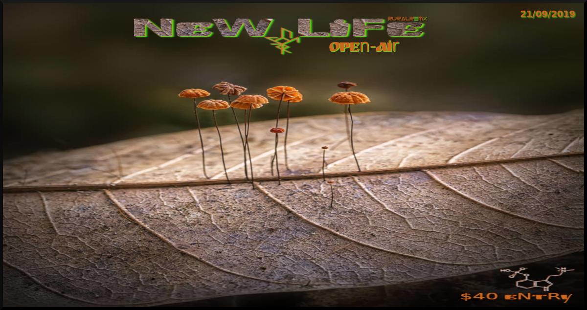New Life - OpenAir 21 Sep '19, 22:00
