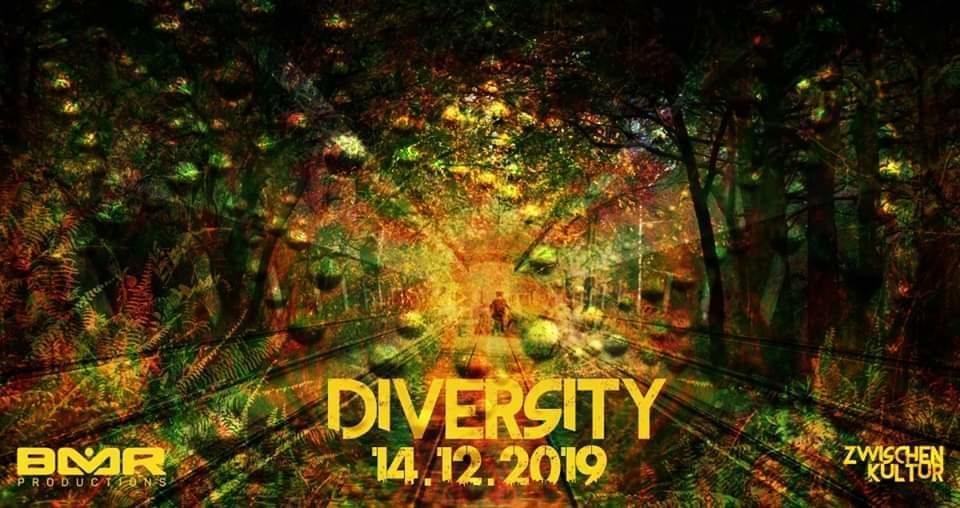 Party Flyer Diversity 14 Dec '19, 22:00