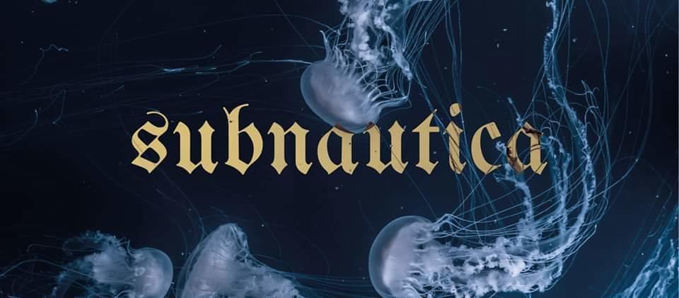 Party Flyer Subnautica 4 Jan '20, 23:00