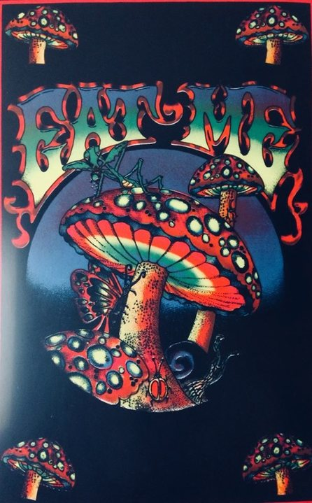 Party Flyer Psychedelic B-day Rave (Psymax / D-Lerium) 8 Feb '20, 22:00