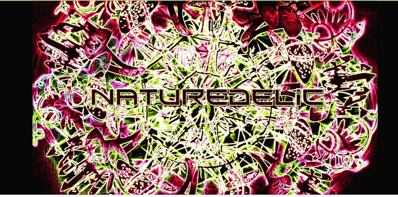 Party Flyer Naturedelic 25 Jul '20, 21:00