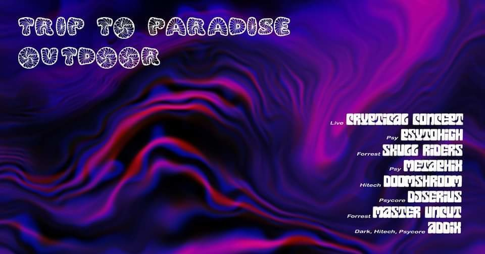 Party Flyer Trip To Paradise /W Cryptical Concept Live (outdoor) 29 Aug '20, 21:00