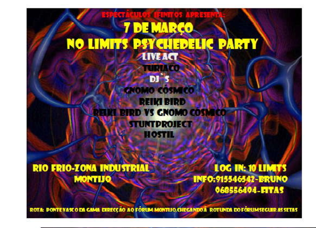 Party Flyer No Limits Psychedelic Party 7 Mar '09, 23:00