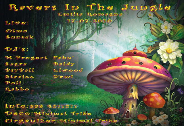 Party Flyer ...:: RAVERS IN THE JUNGLE ::... Happy B-Day Baldy !! 17 Jul '10, 23:30