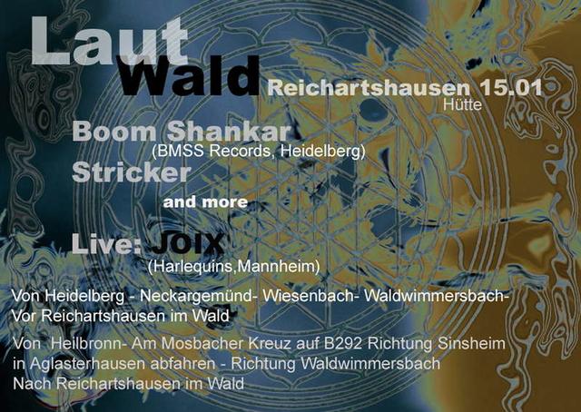 Party Flyer Lautwald 15 Jan '11, 22:30
