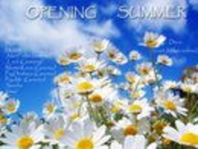 Party Flyer Opening Summer 28 May '11, 19:00