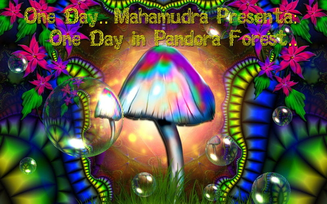 One Day Mahamudra (One day in pandora forest) @area46 17 Dec '11, 23:00
