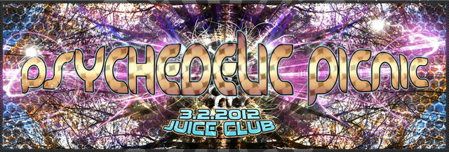 Party Flyer Psychedelic Picnic 3 Feb '12, 23:00