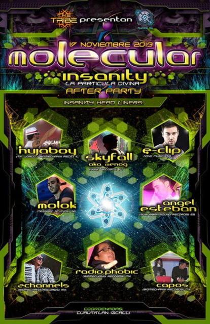 Party Flyer Molecular Insanity - La Particula Divina 17 Nov '13, 08:00