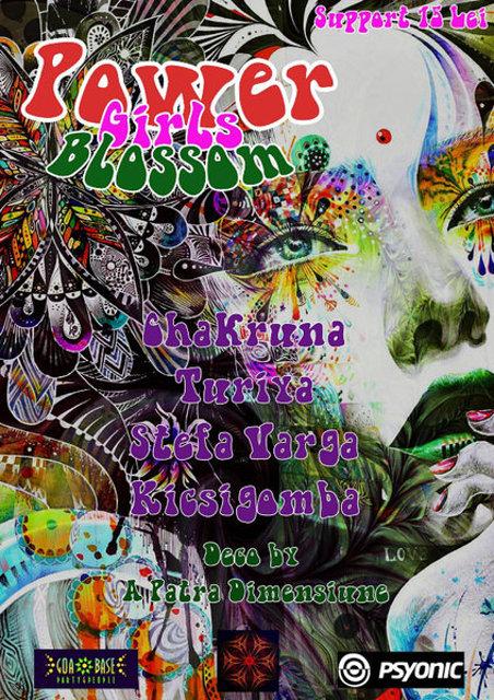 Party Flyer Power Girls Blossom 11 Mar '16, 22:00