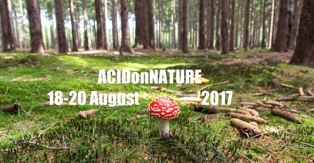 Party Flyer ACIDonNATURE 2017 B-Day 29 again 18 Aug '17, 18:00
