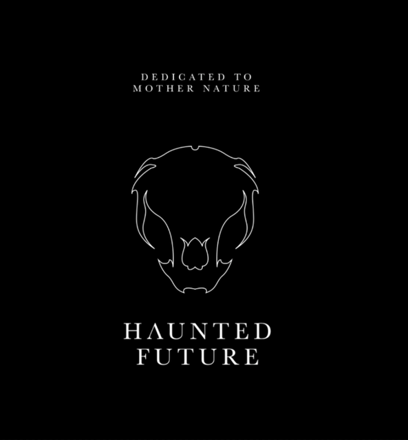 Party Flyer Haunted Future 5 years Anniversary 1 Sep '17, 20:00