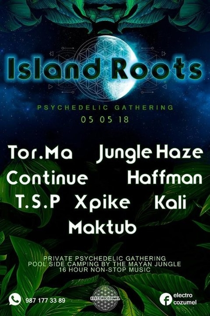 Party Flyer Island Roots - Psychedelic Gathering 5 May '18, 20:00