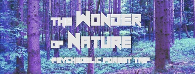 Party Flyer The Wonder of Nature 30 Jun '18, 21:00