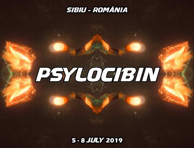 Party Flyer Psylocibin 2019 5 Jul '19, 15:00