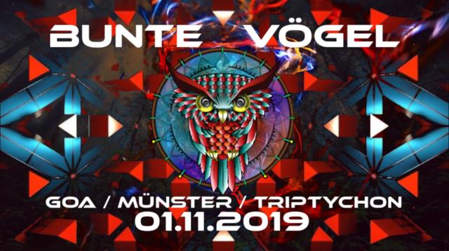 Party Flyer Bunte Vögel 1 Nov '19, 23:00