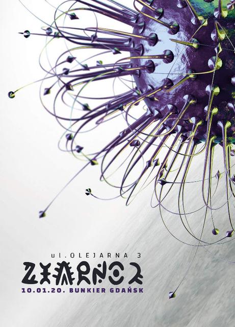 Party Flyer Ziarno 2 - Be Psychedelic & Techenko & Egoistik 10 Jan '20, 22:00