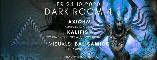 Party Flyer Dark Room #4 24 Oct '20, 19:00