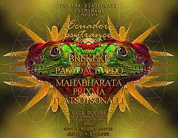 Party Flyer Ecuador Psytrance Party 10 Jul '15, 19:00