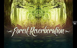 Party Flyer ~ Forest Reverberation ~ Psychedelic Memories ~ Open Air ~ 11 Jul '15, 18:00
