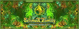 Party Flyer SchmoXFamily- Organic Jungle III 29 Aug '15, 12:00