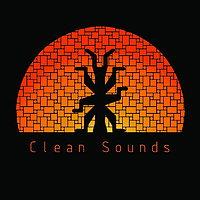 Party Flyer Clean Sounds 5 Sep '15, 22:00