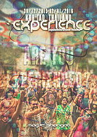 Party Flyer The Experience Festival 2015-2016 30 Dec '15, 18:00