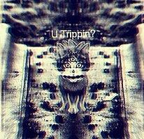 Dark Psychedelic Odysee: Kasatka LIVE* Jairam* BioAndroid* DjWieDu*Matter* 5 Jan '16, 22:00