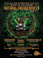 Party Flyer Natural Frequencies 3 16 Jan '16, 21:00