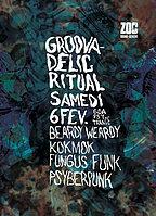 Party Flyer Groovadelic 6 Feb '16, 22:00