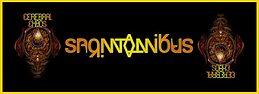 Party Flyer CEREBRAL CHAOS Spontanikus 2016 - 5h Dark Whisper 11 Mar '16, 23:30