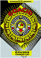 Party Flyer goAcid 8 Apr '16, 22:00