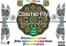 Party Flyer Cosmic Fly! 30 Jun '16, 21:00