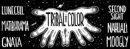 Party Flyer Tribal Color 1 Jul '16, 20:30